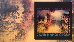 Peaced and Slightly Pulverized von David Nance Group