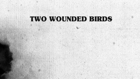 Two Wounded Birds von Two Wounded Birds