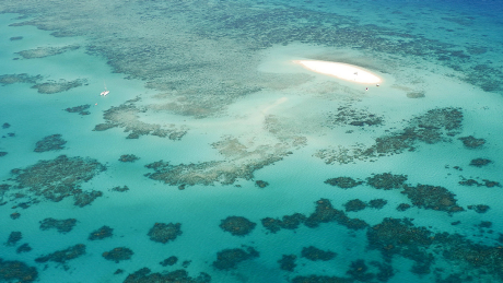 Korallenriff / Great Barrier Reef © imago images/blickwinkel
