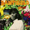 I Don't Want (The Gold Fire Sessions) von Santigold